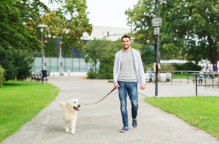 how to treating separation anxiety in dogs