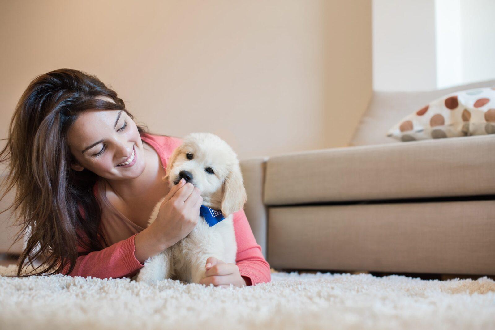 puppy behavior stages socialization