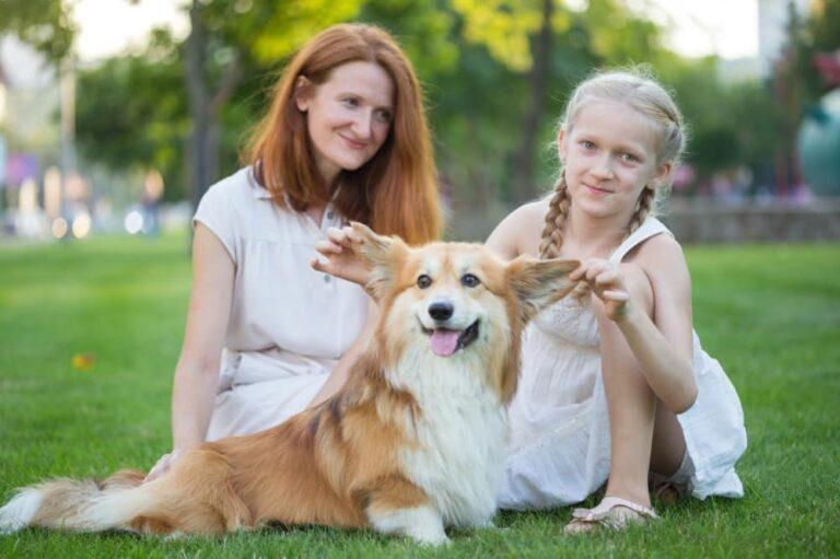 tips on choosing family dog